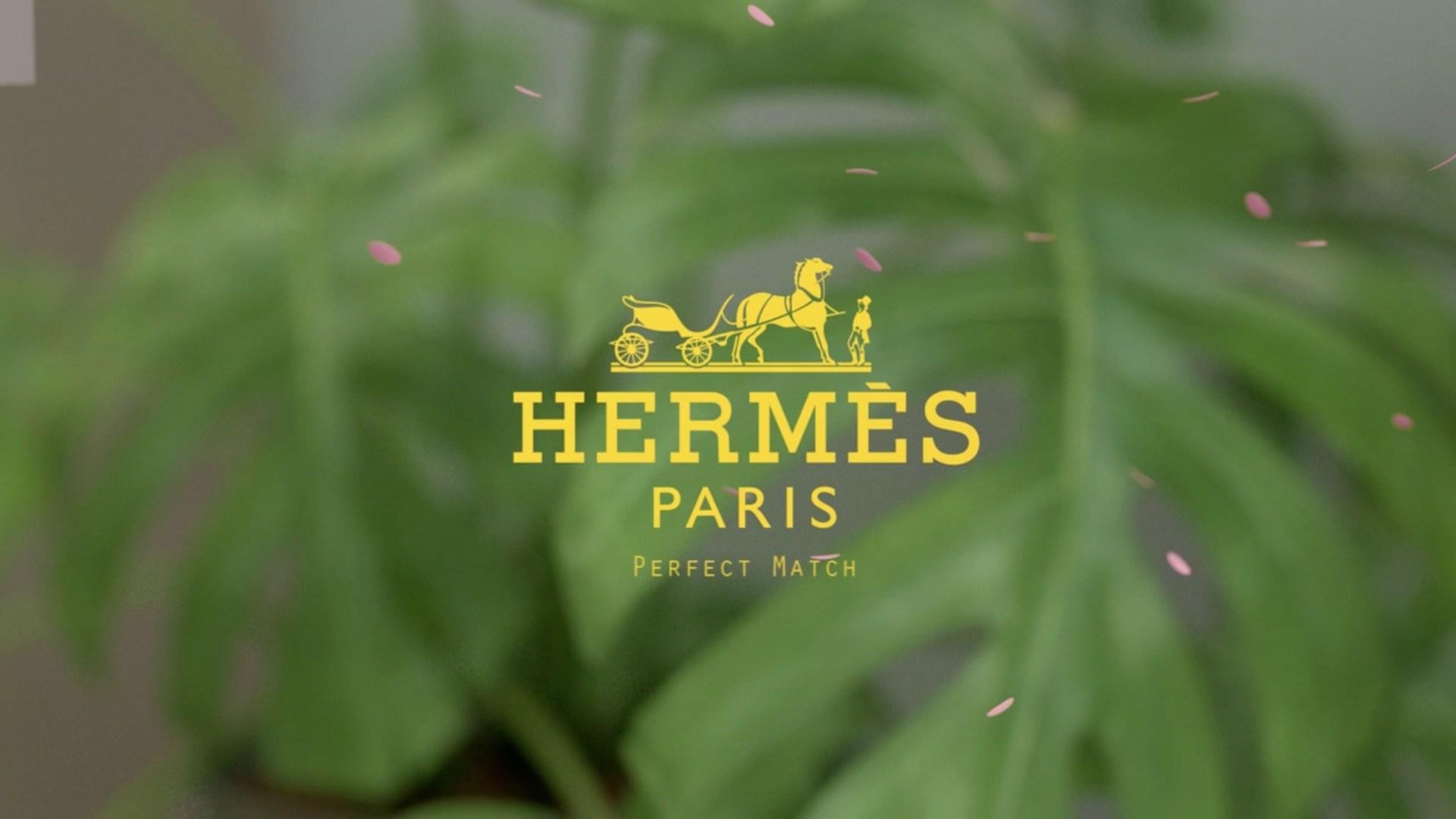 Hermes 中国 China
