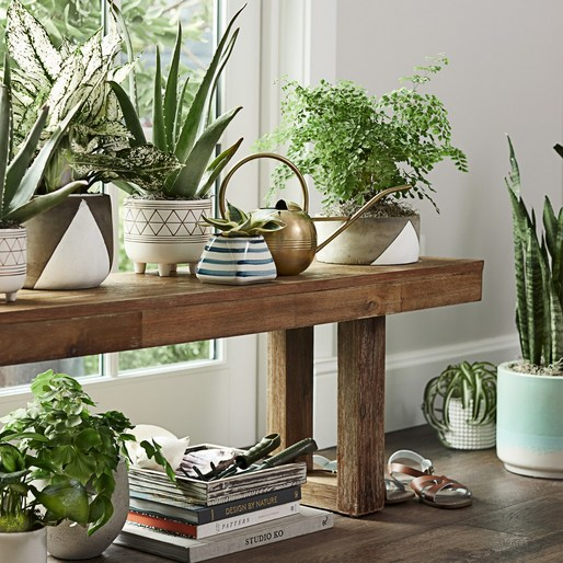 prop styling by Marcus Hay -