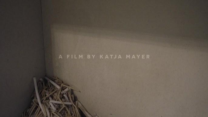 Katja Mayer H Magazine -  H Magazine