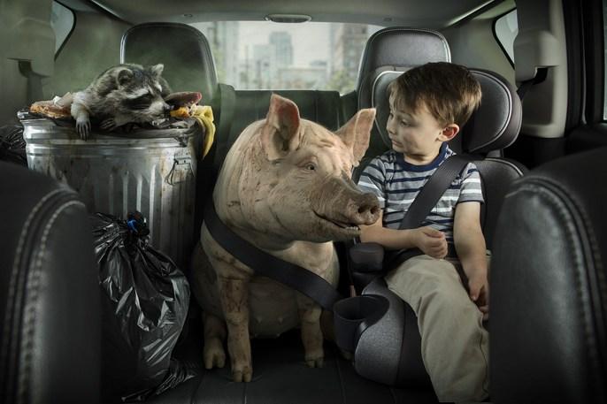 8767_JMP_Purolator_Pig_Raccoon.jpg -